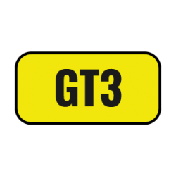 GT3 Cup USA Gold